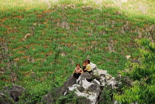 Những em bé đang chơi đùa trên đá tại Sa Pa.