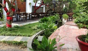 Không gian xanh mát của quán cà phê Nguyệt Quế. Ảnh: Cà phê Nguyệt Quế