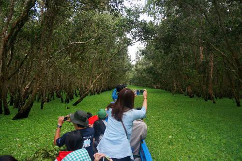 Du khách sẽ thích thú khi đi xuồng vào sâu trong rừng Trà Sư.