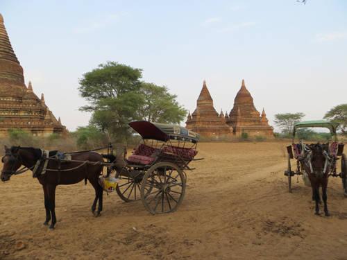 Một chiếc xe ngựa ở Bagan chở tối đa 3 du khách đi tham quan các đền chùa từ bình minh đến hoàng hôn.