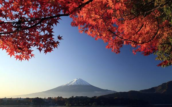Vẻ đẹp hùng vĩ của núi Phú Sĩ vào mùa thu. Ảnh: giangle.org