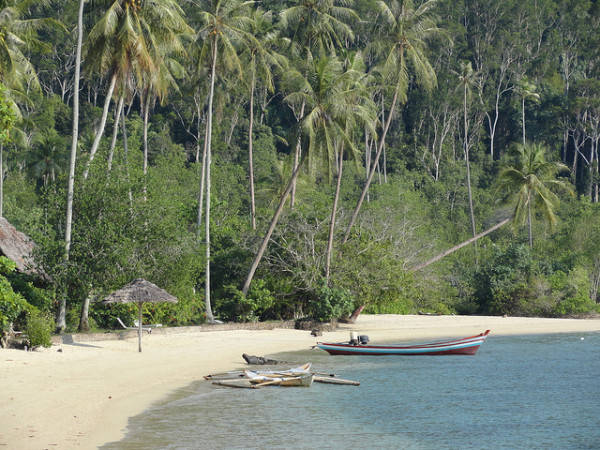 Đảo Sumatra, Indonesia.