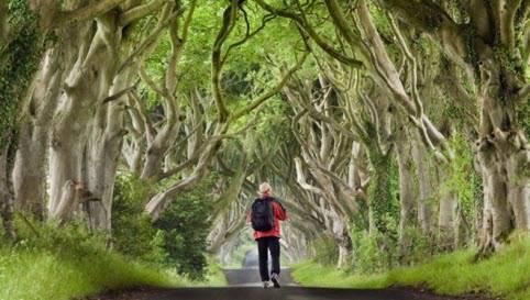 Bắc Ireland, Anh.