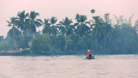 Vùng đồng bằng sông Cửu Long, Việt Nam.