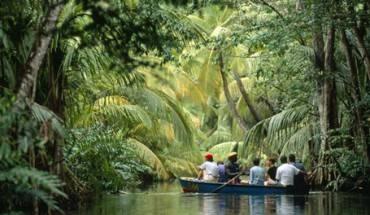 Du lịch rừng rậm nhiệt đới ở Dominica.