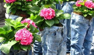 Một cách thể hiện sáng tạo trong lễ hội hoa được tổ chức tại Seoul. (Ảnh: Offal Goat)
