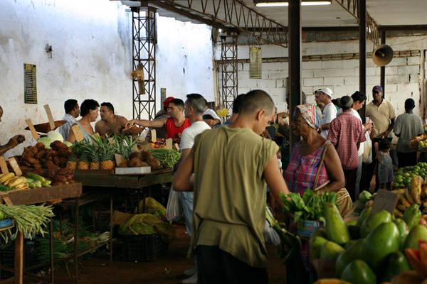 Các khu chợ của người nông dân, nơi du khách có thể mua được những đồ thực phẩm giá rẻ.