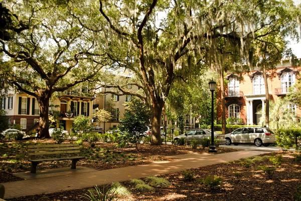 Tháng 11 tới khám phá thành phố Savannah thuộc tiểu bang Georgia.