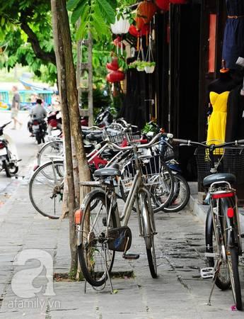 Bạn có thể thuê xe đạp với giá rất mềm, hoặc nhiều khách sạn cho khách mượn xe miễn phí.