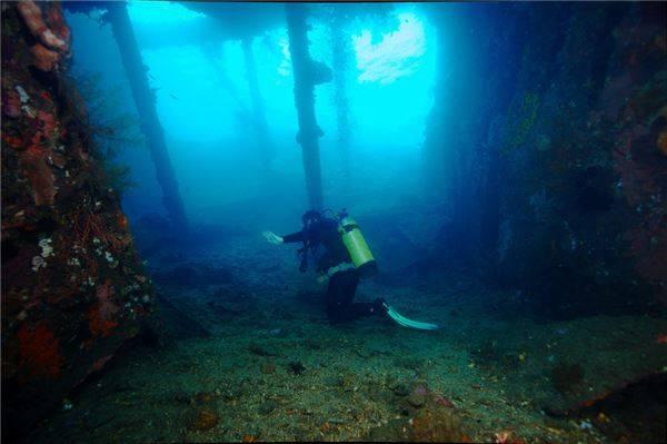 Tại Bali bạn cũng có thể được trải nghiệm lặn biển để khám phá bên trong một còn tàu bị đắm.