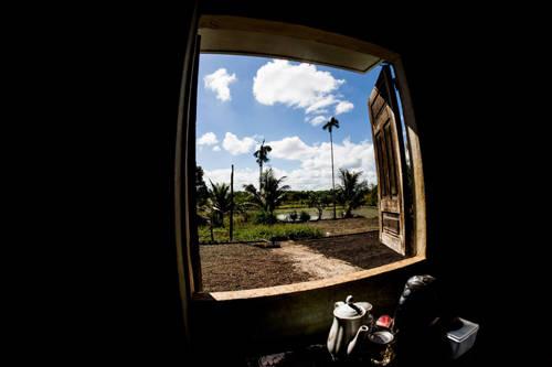 Description: Mùa thu hoạch cà phê khoảng tháng 10, 11 âm lịch cũng là thời điểm bạn có thể tới Kon Tum. Ảnh: Bọ Ngựa.