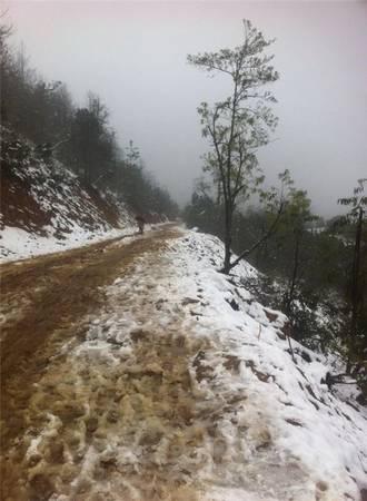 Y Tý cũng được ghi nhận là đã xuất hiện tuyết.