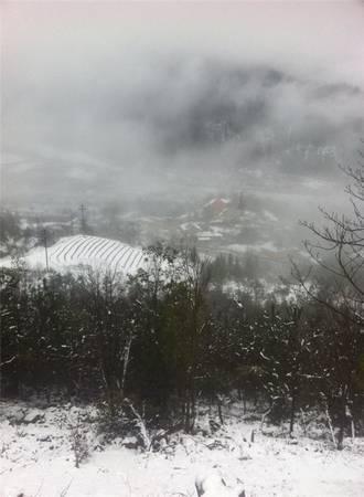 Tuyết cùng mây mù khiến Y Tý nhưng chìm trong băng giá.