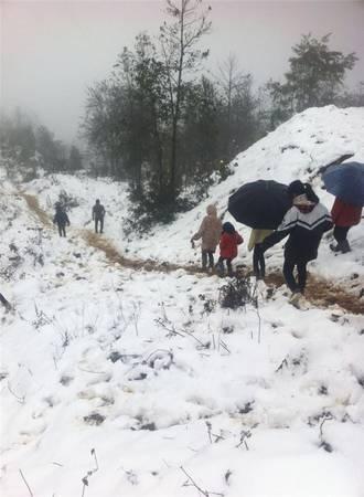 Tuyết rơi gây cản trở khó khăn cho việc đi lại.