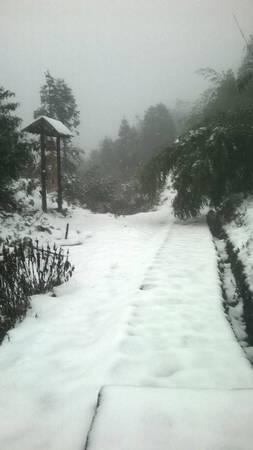 con đường tuyết trắng.