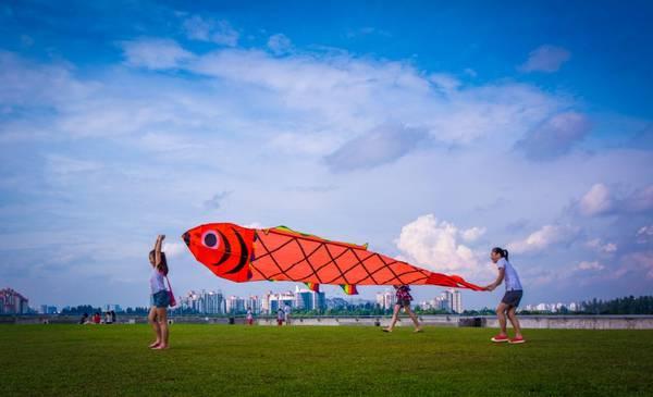 Đập nước Marina là nơi lý tưởng để chơi thả diều.
