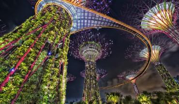 """Hệ thống """"siêu cây"""" khổng lồ tại Bay South Garden. Ảnh: Travellersbazaar"""
