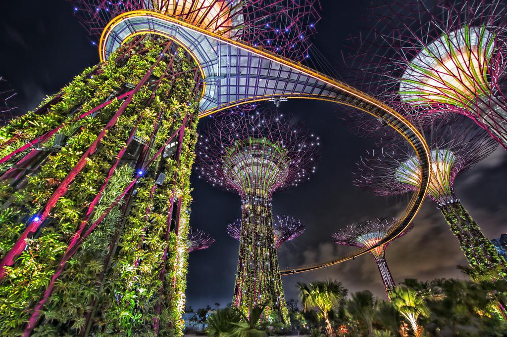 """Hệ thống """"siêu cây"""" khổng lồ tại Bay South Garden."""