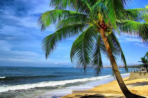 Bãi biển Phan Thiết trong xanh và yên bình.