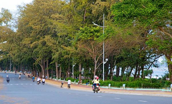 Con đường xinh đẹp chạy dọc theo biển Đồi Dương.
