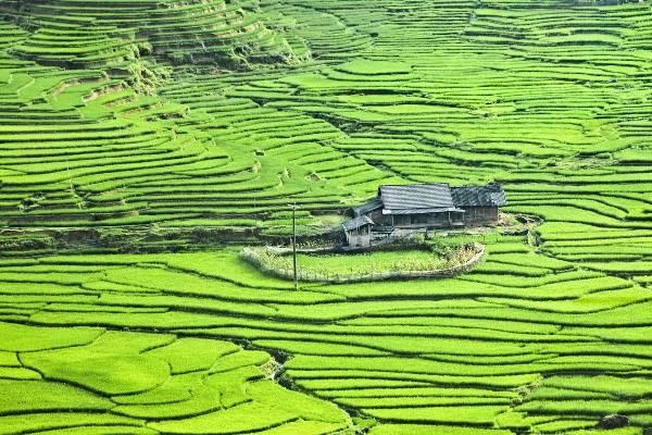Sapa - một trong những điểm đến tươi đẹp nhất Việt Nam.