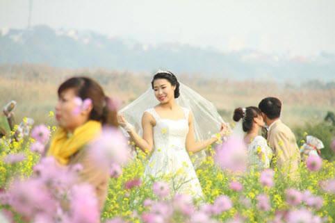 Bãi đá sông Hồng trở thành điểm thu hút các dịch vụ chụp ảnh cưới.
