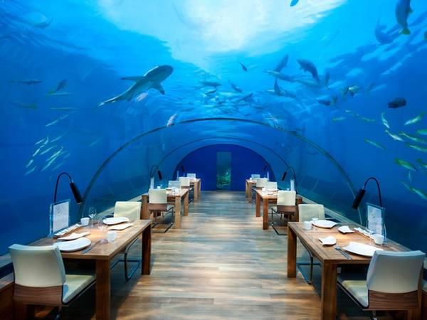 Nhà hàng dưới biển Ithaa, Maldives