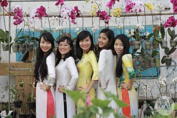 5 cô gái xinh đẹp đọ sắc cùng lan hồ điệp giữa phố.