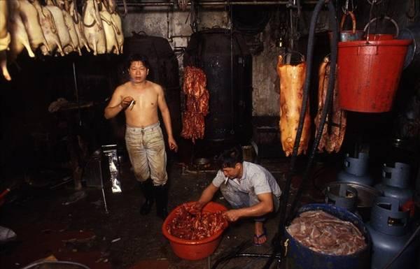Với những người làm nghề chế biến thịt gia súc, việc không có luật lệ càng trở nên quan trọng để dễ bề hoạt động.