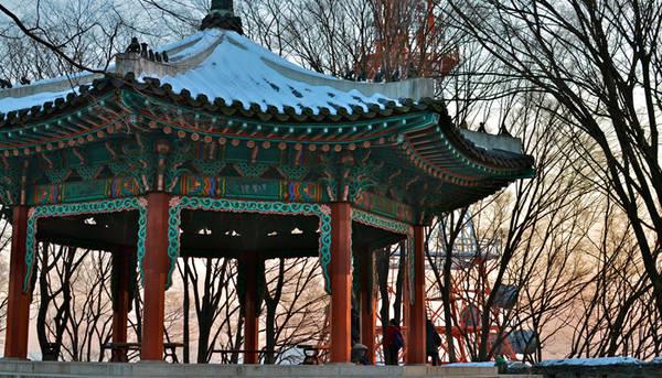 Hiện nay N Seoul là không gian văn hóa nổi tiếng với những buổi biểu diễn, chiếu phim, các cuộc triển lãm. Ở đây còn có chuỗi nhà hàng cao cấp và các quán bán đồ ăn nhẹ phục vụ du khách.