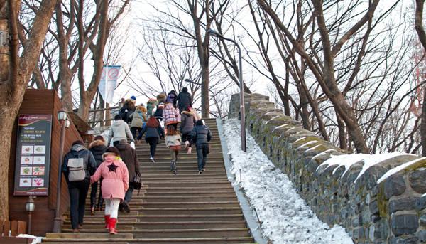Khách tham quan có thể đi cáp treo Namsan lên núi, rồi đi bộ lên tháp ngắm cảnh đẹp hai bên.