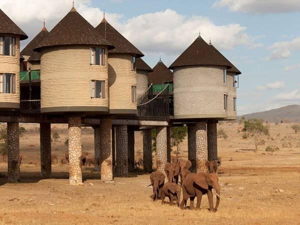 Sarova Salt Lick Game Lodge, Tsavo, Kenya