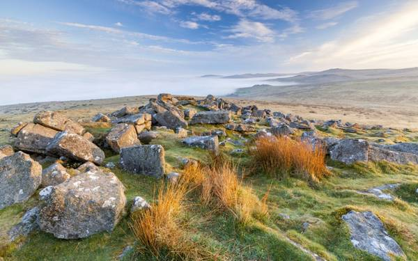 13. Dartmoor, Anh