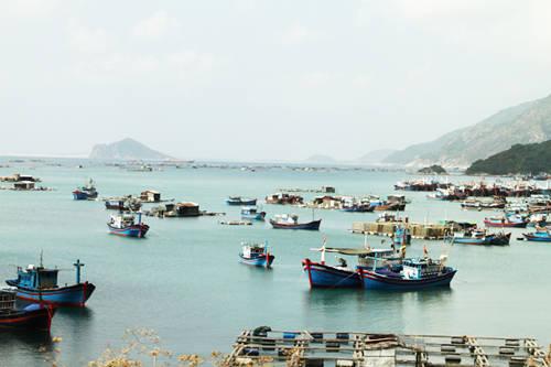 Phú Yên bình yên, làm say lòng nhiều du khách.