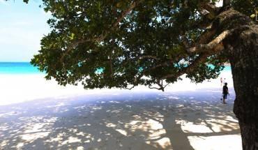 seychellesvuondaidang-ivivu-2
