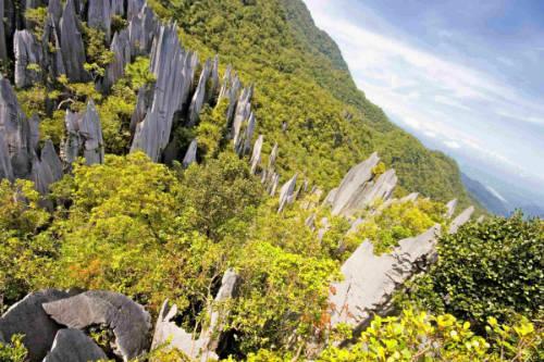 Vườn Quốc Gia Gunung Mulu, Borneo, là một trong những di sản thiên nhiên thế giới