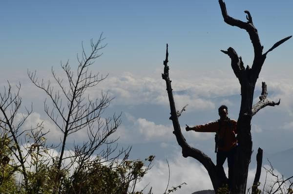 Từ đỉnh núi Muối – góc nhìn đẹp trên hành trình chinh phục Bạch Mộc.