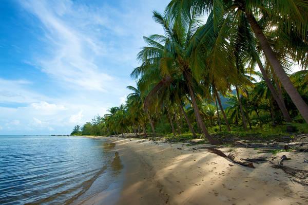 Bãi Cây Mến ở hòn Lớn cũng như những bãi tắm lớn nhỏ khác trong đảo Nam Du vẫn chưa nhiều dấu chân du khách, nên biển nơi đây rất hoang sơ.