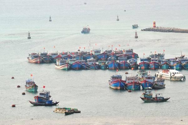 Bến cảng trên đảo Lý Sơn.