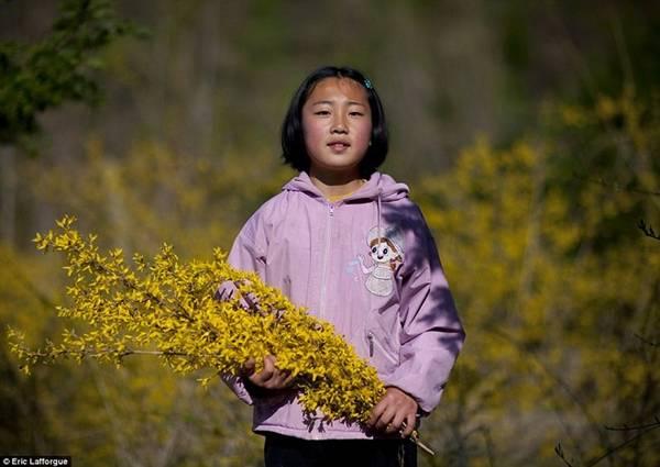 Một cô bé Triều Tiên đang hái hoa. Cho tới tận thập niên 90, khu vực này gần như không có liên hệ với các vùng khác.