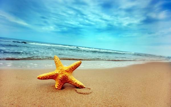 Để đón bình minh trên biển thì Hồng Vàn là một địa điểm rất thích hợp. Ảnh: sandichvudulich