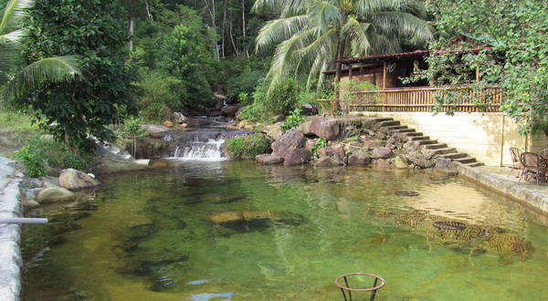 Một góc xanh mát củaFreedom Resort.Ảnh: freedom-island-bungalow.com
