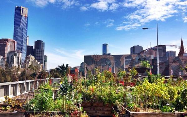 Melbourne: Giá phòng trung bình là 91 Bảng Anh (khoảng 2,98 triệu đồng), giảm 14% so với cùng kỳ năm ngoái.