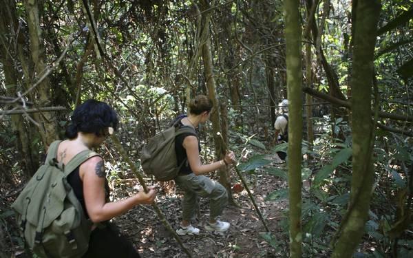 Du khách đang đi bộ khám phá các khu rừng của Lào.