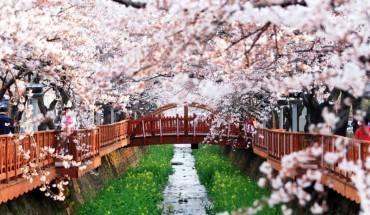 Hàn Quốc là một điểm đến du lịch yêu thích của du khách Việt. Ảnh: Changwoncity.wordpress.com