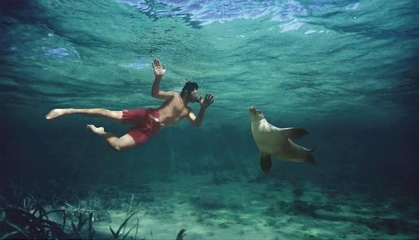 <strong>9. Coi thường dòng biển: </strong>Hãy cẩn thận khi xuống nước nếu có người bảo bạn không nên tắm ở đó dù sóng nhỏ, nếu không bạn sẽ bị họ cười vào mặt trong lúc các nhân viên cứu hộ lôi bạn lên bờ sau khi bị dòng biển ngầm làm cho kiệt sức. Ảnh: Funny-pictures.