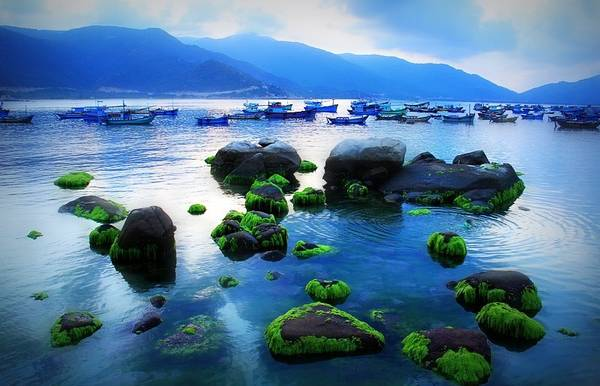 Đảo Bình Hưng hoang sơ có sức hút khó cưỡng đối với các bạn trẻ yêu thích du lịch bụi.