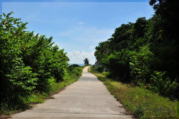 Description: Đường bê tông trên đảo. Ảnh: Hovinhthang/ vnphoto.net
