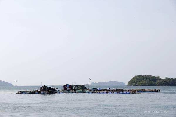 Description: Bè nuôi hải sản ở trên đảo. Ảnh: Cuongchan.com