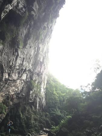 Từ cửa hang nhìn ra là một khu rừng nguyên sinh rộng lớn.